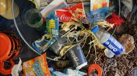 proyecto repesca_plas, repesca_plas, basura marina, residuos plásticos, aimplas, instituto tecnológico del plástico, contaminación, medio ambiente, pesca, pesacadores, gandía, vigo