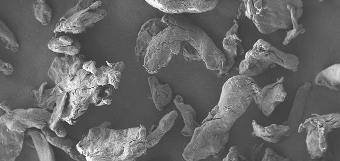 Alternativas medioambientalmente respetuosas a los microplásticos para cosmética