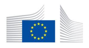Unión europea, comusión europea, comité reach, ftalatos, restricción, toxicidad, repercusiones sobre la salud