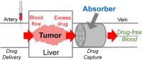 berkeley, polímero, quimioterapia, cilindro absorbedor, efectos secundarios, tratamiento contra el cancer, plásticos contra el cancer