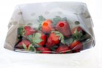 itene, envases, fruta, bacterias, hongos, envases activos, alargar la vida útil de la fruta envasada, proyecto fruit4U, melón, frutos rojos, conservación, melon, fruta cortada, envases, envasado
