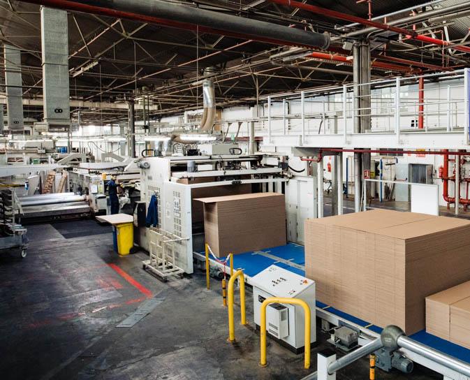 Hinojosa adquiere las unidades productivas de Demco y Edihor
