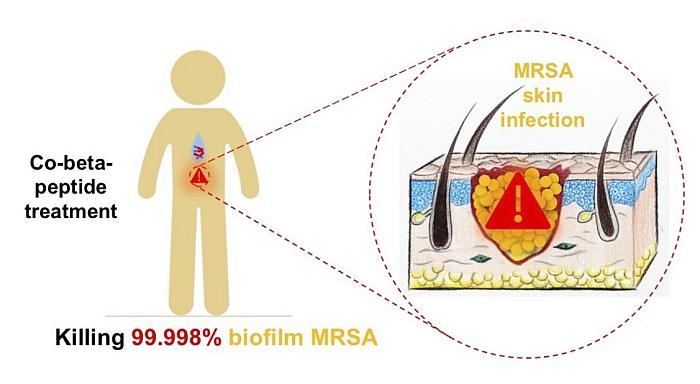polímero resistencia antibiótico