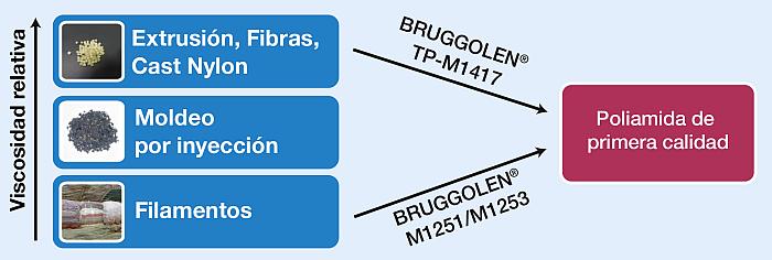 Bruggolen M